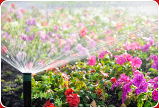 sarasota sprinkler systems