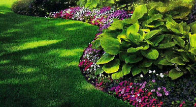 Welcome To State Of The Art Landscaping Sarasota Landscapers